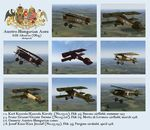 Plane Texture Pack for Austro-Hungarian Albatros D.III (Oefag)